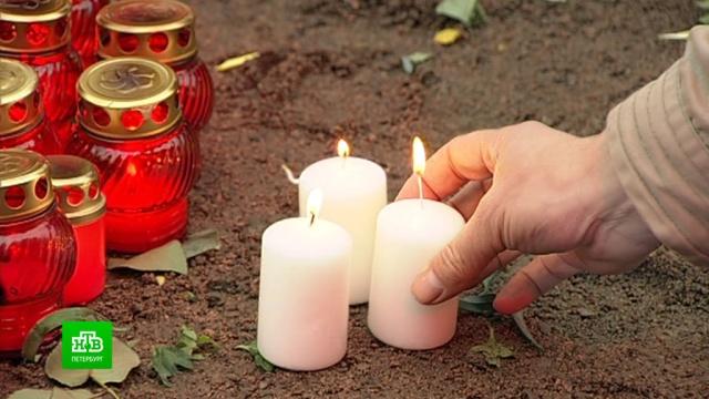 Египетские власти упорно не признают терактом крушение A321 над Синаем.Египет, Санкт-Петербург, авиационные катастрофы и происшествия, компенсации, суды, терроризм.НТВ.Ru: новости, видео, программы телеканала НТВ