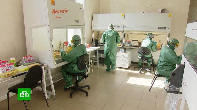 Победившие коронавирус россияне делятся впечатлениями о пережитом.больницы, коронавирус, медицина, эпидемия.НТВ.Ru: новости, видео, программы телеканала НТВ