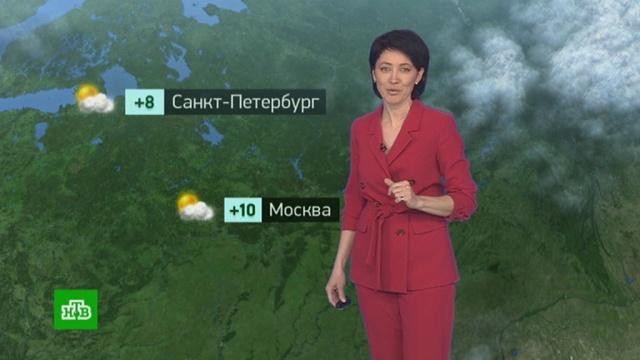 Утренний прогноз погоды на 26марта.погода, прогноз погоды.НТВ.Ru: новости, видео, программы телеканала НТВ