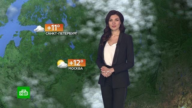 Прогноз погоды на 28 марта.погода, прогноз погоды.НТВ.Ru: новости, видео, программы телеканала НТВ