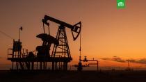 Цена нефти Brent упала ниже $25 за баррель.Стоимость майских фьючерсов на нефть марки Brent в ходе торгов на Лондонской бирже ICE упала на 6, 19% — до $24, 71 за баррель, следует из данных торговой площадки..биржи, валюта, доллар, евро, нефть.НТВ.Ru: новости, видео, программы телеканала НТВ