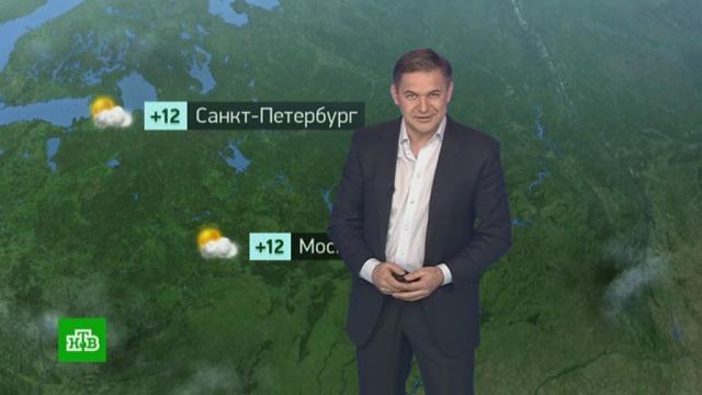 Утренний прогноз погоды на 27марта.погода, прогноз погоды.НТВ.Ru: новости, видео, программы телеканала НТВ