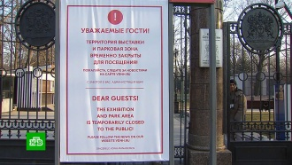 Московские пенсионеры продолжают выходить на улицу, несмотря на карантин