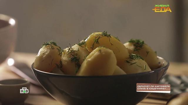 Образуетли картофель слизь вкишечнике?НТВ.Ru: новости, видео, программы телеканала НТВ