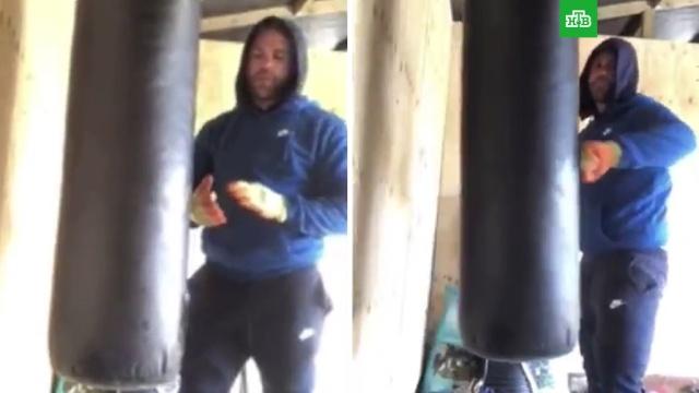 Боксер снял видеоурок обитье жен во время карантина.Великобритания, бокс, драки и избиения, женщины, семья, скандалы.НТВ.Ru: новости, видео, программы телеканала НТВ