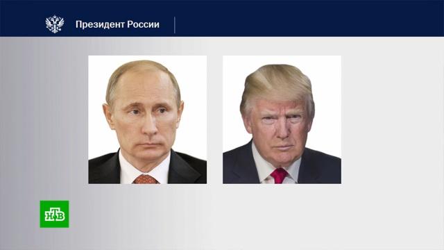 Путин иТрамп обсудили эпидемию COVID-19 иситуацию на рынке нефти.США, Трамп Дональд, болезни, карантин, коронавирус, нефть, эпидемия.НТВ.Ru: новости, видео, программы телеканала НТВ