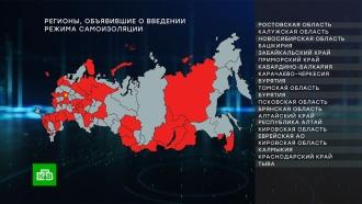 Половину регионов РФ перевели на всеобщую самоизоляцию