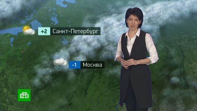 Утренний прогноз погоды на 31марта.погода, прогноз погоды.НТВ.Ru: новости, видео, программы телеканала НТВ