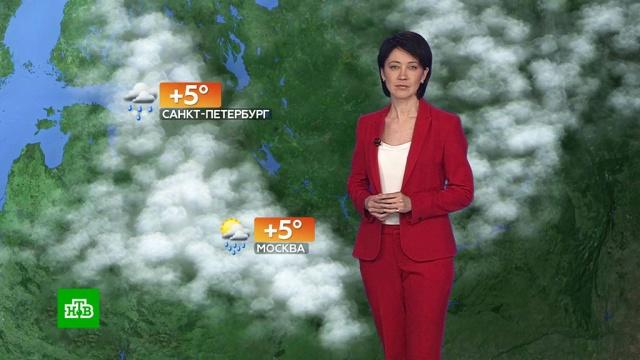 Прогноз погоды на 2апреля.погода, прогноз погоды.НТВ.Ru: новости, видео, программы телеканала НТВ