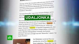 Немецкого журналиста очаровала «уютная русская удаленка»