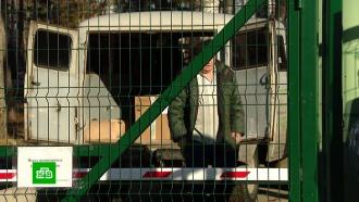 Бунтуют исбегают: вернувшиеся вРоссию туристы массово протестуют против карантина