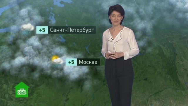 Утренний прогноз погоды на 2апреля.погода, прогноз погоды.НТВ.Ru: новости, видео, программы телеканала НТВ