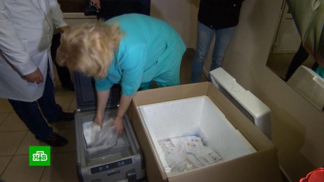 В Белоруссию из России отправили 10 тысяч тест-систем для выявления COVID-19.Белоруссия, болезни, карантин, коронавирус, медицина, эпидемия.НТВ.Ru: новости, видео, программы телеканала НТВ