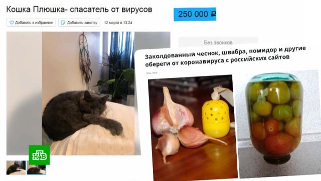 Чудо-мыло, живая вода, кошка-плюшка: самые безумные «противовирусные» товары.коронавирус, мистика и оккультизм, мошенничество, торговля.НТВ.Ru: новости, видео, программы телеканала НТВ