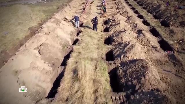 На Украине вырыли сотни могил для жертв коронавируса.кладбища и захоронения, больницы, похороны, здоровье, Украина, болезни, эпидемия, Порошенко, коронавирус, Зеленский.НТВ.Ru: новости, видео, программы телеканала НТВ
