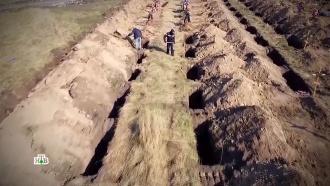 На Украине вырыли сотни могил для жертв коронавируса