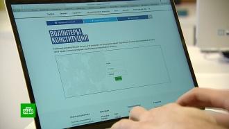 114тысяч волонтеров объяснят россиянам смысл поправок вКонституцию