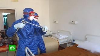 Российские специалисты дезинфицируют больницы вСербии ипринимают пациентов вИталии