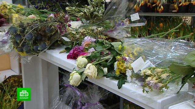 Коронавирусные ограничения могут уничтожить цветочный бизнес Петербурга.Санкт-Петербург, коронавирус, магазины, торговля, цветы, экономика и бизнес, эпидемия.НТВ.Ru: новости, видео, программы телеканала НТВ