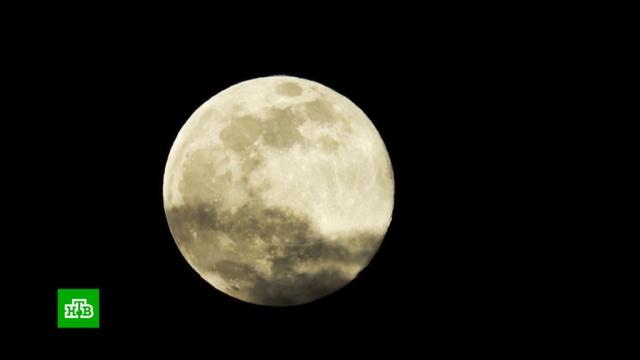 Москвичи увидят суперлуние утром в среду.Луна, Москва, астрономия, космос, наука и открытия.НТВ.Ru: новости, видео, программы телеканала НТВ