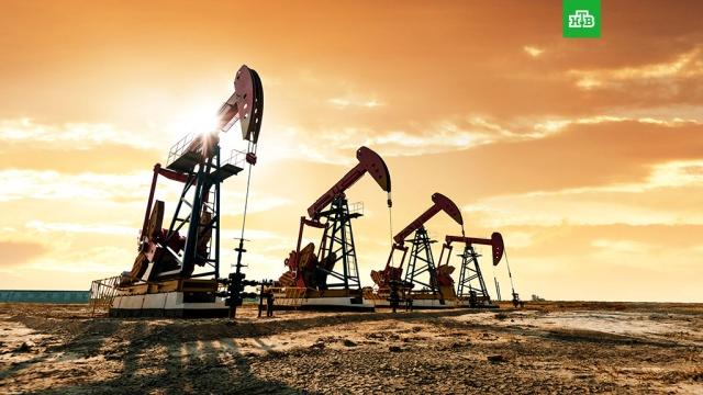 Bloomberg: Саудовская Аравия требует, чтобы Россия сократила добычу нефти больше всех.Экстренная встреча стран ОПЕК+ не состоялась 6 апреля из-за требований, которые Саудовская Аравия предъявила России..ОПЕК, Саудовская Аравия, нефть.НТВ.Ru: новости, видео, программы телеканала НТВ