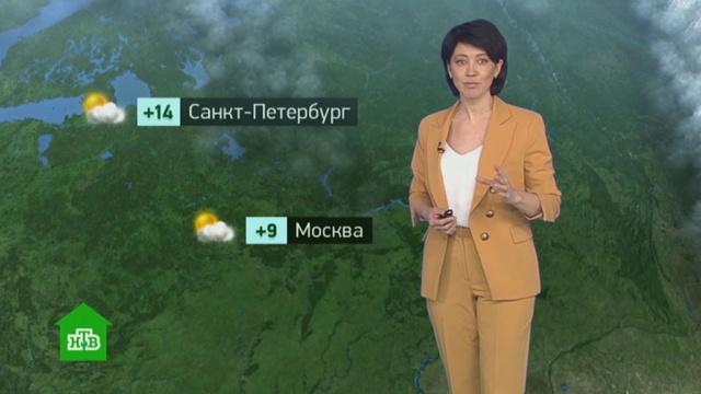 Утренний прогноз погоды на 7апреля.погода, прогноз погоды.НТВ.Ru: новости, видео, программы телеканала НТВ