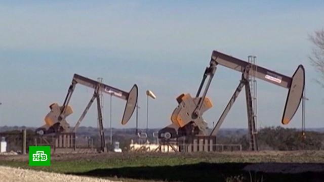 Снижение нефтедобычи: поможетли решение ОПЕК+ компенсировать падение спроса.ОПЕК, Путин, Саудовская Аравия, Трамп Дональд, нефть, переговоры, экономика и бизнес.НТВ.Ru: новости, видео, программы телеканала НТВ