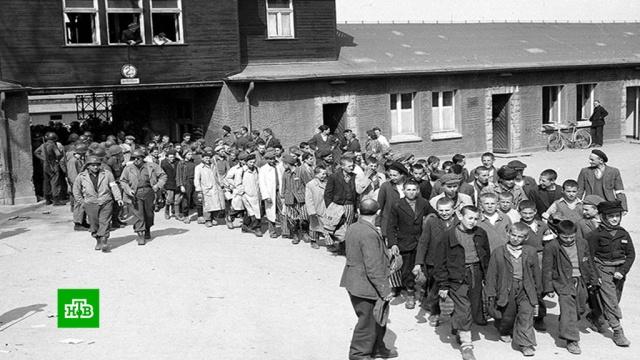 Они видели фашизм своими глазами: в мире вспоминают узников нацистских концлагерей.Вторая мировая война, Германия, история, памятные даты, фашизм.НТВ.Ru: новости, видео, программы телеканала НТВ
