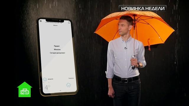 Трудно потерять, невозможно забыть: как работает «умный» зонт.НТВ.Ru: новости, видео, программы телеканала НТВ