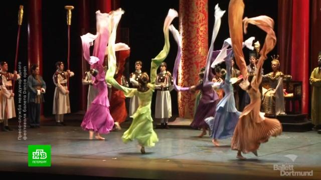 Dance Open показывает лучший балет онлайн.Интернет, Санкт-Петербург, балет, карантин, коронавирус, музыка и музыканты.НТВ.Ru: новости, видео, программы телеканала НТВ