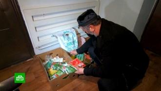 Власти Чечни выделили 30млн рублей на семена для частных огородов