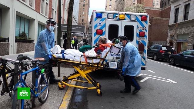 Трамп сообщил опрохождении пика заболеваемости COVID-19 вСША.США, Трамп Дональд, болезни, здоровье, коронавирус, эпидемия.НТВ.Ru: новости, видео, программы телеканала НТВ