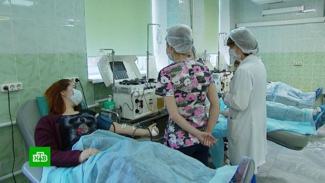 Один победивший COVID-19 донор может спасти трех пациентов.здравоохранение, медицина, здоровье, кровь, донорство, болезни, эпидемия, коронавирус.НТВ.Ru: новости, видео, программы телеканала НТВ