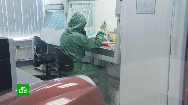 Глава Минздрава оценил ситуацию скоронавирусом вРоссии.Минздрав, болезни, карантин, коронавирус, медицина, эпидемия.НТВ.Ru: новости, видео, программы телеканала НТВ