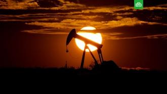 Цена нефти WTI опустилась ниже $9