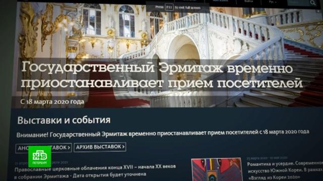 Какие проблемы принесла музеям пандемия коронавируса.Санкт-Петербург, Эрмитаж, выставки и музеи, карантин, коронавирус.НТВ.Ru: новости, видео, программы телеканала НТВ