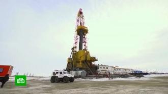 Впервые за 20лет цена барреля нефти Brent опустилась ниже $16