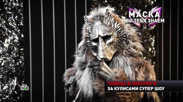 Волк приметил «аппетитный бочок» Мартиросяна.НТВ, артисты, знаменитости, телевидение, шоу-бизнес, эксклюзив.НТВ.Ru: новости, видео, программы телеканала НТВ