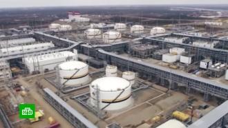 Путин потребовал не допустить дефицита топлива