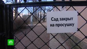 Петербургские депутаты просят губернатора разрешить прогулки в садах и парках