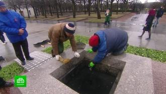 На Пискарёвском кладбище началась генеральная уборка