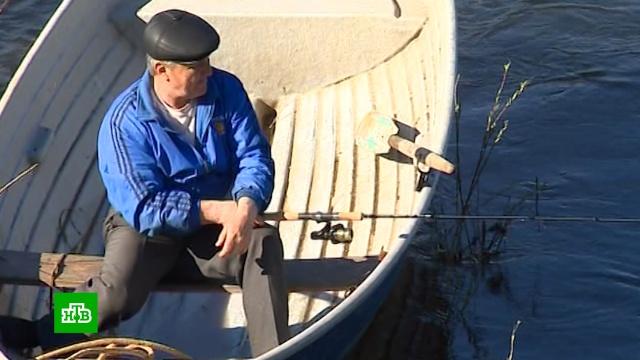 Рыбакам-любителям хотят разрешить продавать улов.законодательство, охота и рыбалка.НТВ.Ru: новости, видео, программы телеканала НТВ