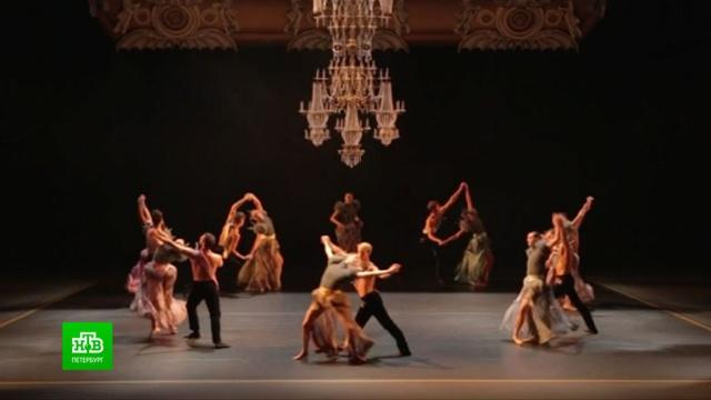 Прыжок ввиртуальность: фестиваль балета Dance Open невероятно популярен вИнтернете.Интернет, Санкт-Петербург, балет, коронавирус, фестивали и конкурсы, эпидемия.НТВ.Ru: новости, видео, программы телеканала НТВ