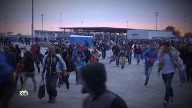 Почему сидящая на карантине Европа продолжает принимать беженцев.Болгария, беженцы, мигранты, Германия, карантин, Европа, болезни, эпидемия, коронавирус.НТВ.Ru: новости, видео, программы телеканала НТВ