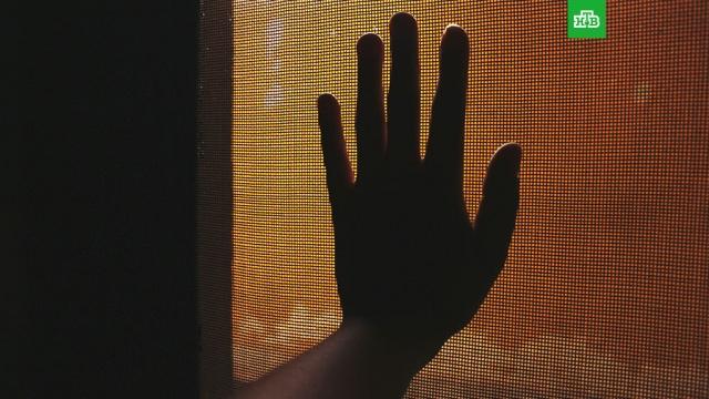 Смертельная опасность москитных сеток.дети и подростки, детские сады, животные, ЗаМинуту, несчастные случаи.НТВ.Ru: новости, видео, программы телеканала НТВ