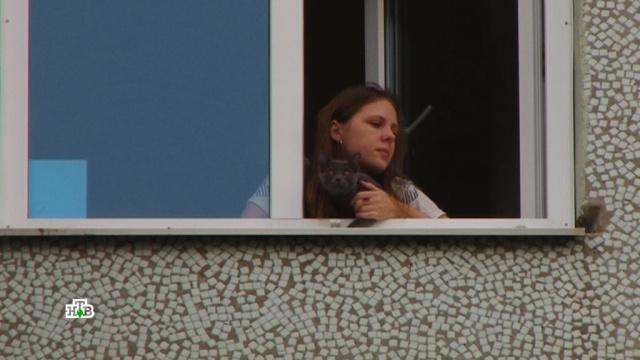 Психологическая усталость: любители пикников рвутся впарки вопреки запретам.болезни, больницы, врачи, здоровье, коронавирус, эпидемия.НТВ.Ru: новости, видео, программы телеканала НТВ
