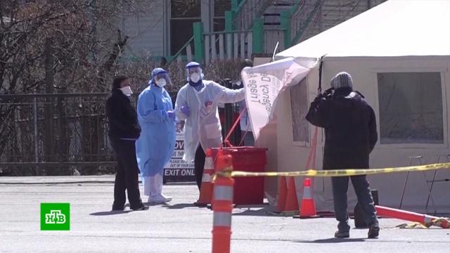 Китай задал США вопросы о тайных экспериментах в лабораториях.США, болезни, коронавирус, медицина, эпидемия.НТВ.Ru: новости, видео, программы телеканала НТВ