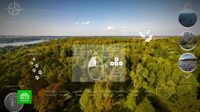 Петербуржцев приглашают на виртуальную прогулку.3D, Интернет, Санкт-Петербург, карантин, коронавирус, экология, эпидемия.НТВ.Ru: новости, видео, программы телеканала НТВ