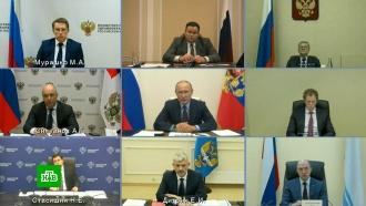 В три этапа: Путину представили план отмены коронавирусных ограничений