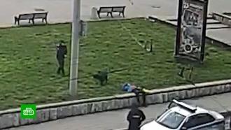 Зоозащитники потребовали наказать полицейского, застрелившего агрессивного пса